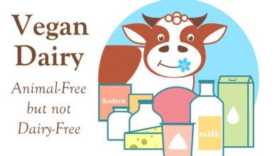 Photo of Is Vegan Dairy Free? Usually, But These Products are Exceptions …
